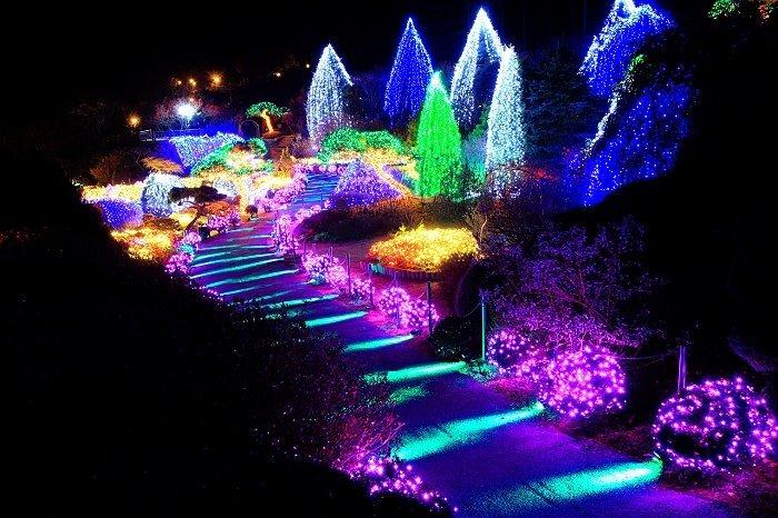 The garden of morning calm, Korea Tour
