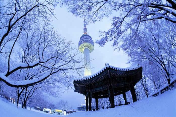 Korea Tour_Seoul city tour_N Seoul Tower