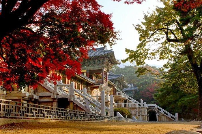Gyeongju City Tour_Korea Tour_Bulguksa Temple