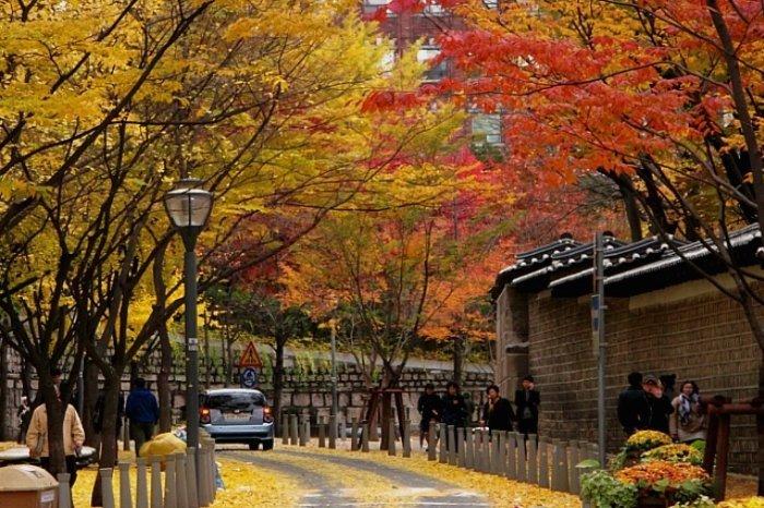 Korea Tour_Seoul city tour_Romantic Street in Seoul