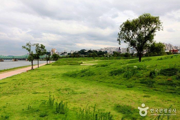 Korea Tour_Hanriver Park