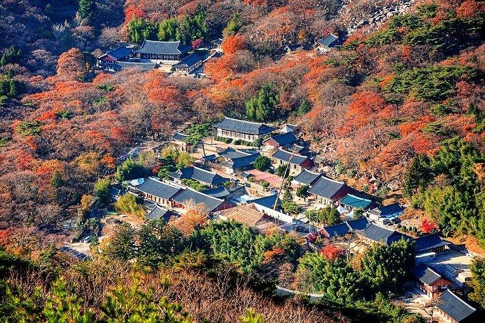 Korea Tour_Busan Beomeosa Temple