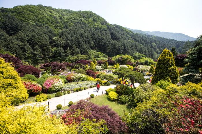 KTO_3511003201705002k_The Garden of Morningcalm