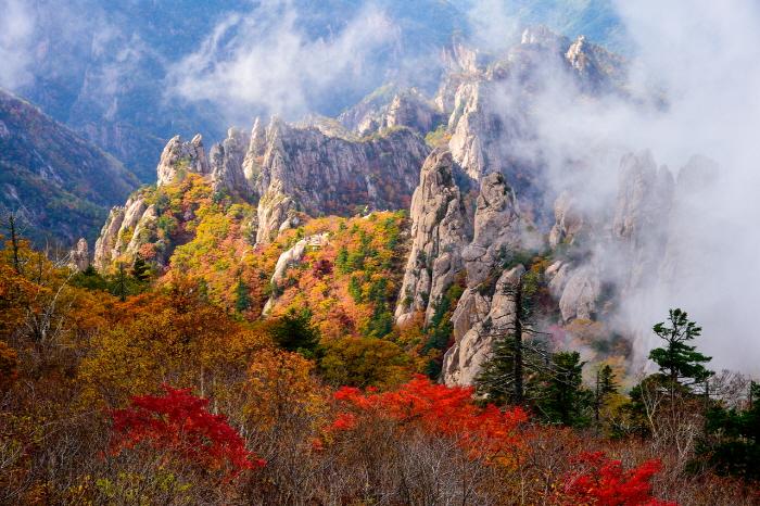 KTO_3820143201500021k_Autumn of Yongajangseong Ridge
