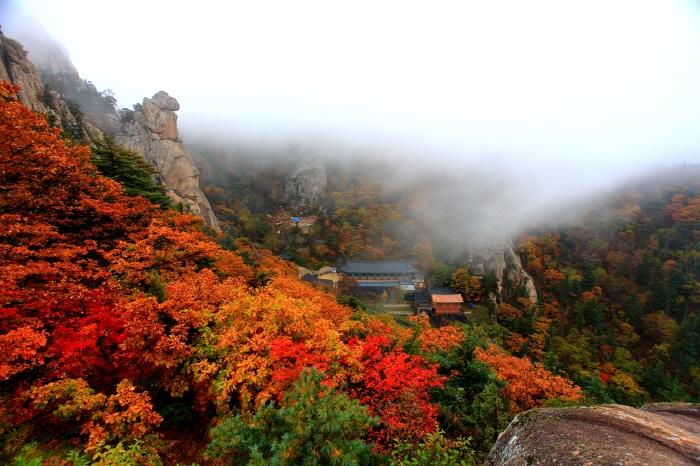 Nami Island And Mt Seorak Tour