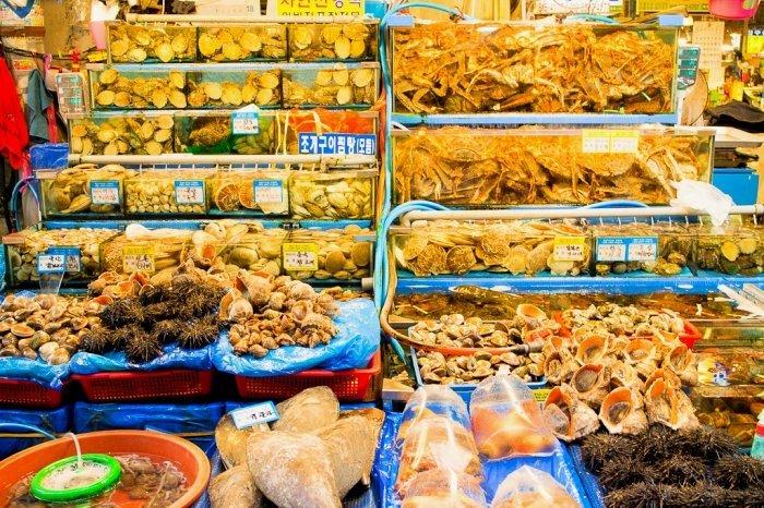 Korea Tour_Noryangjin Fish Market