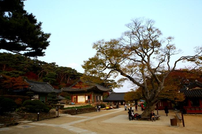 Photo from KTO_Jeondeungsa Temple