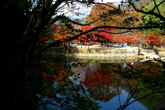 Photo from KTO_Mt. Naejangsan in Autumn (2)
