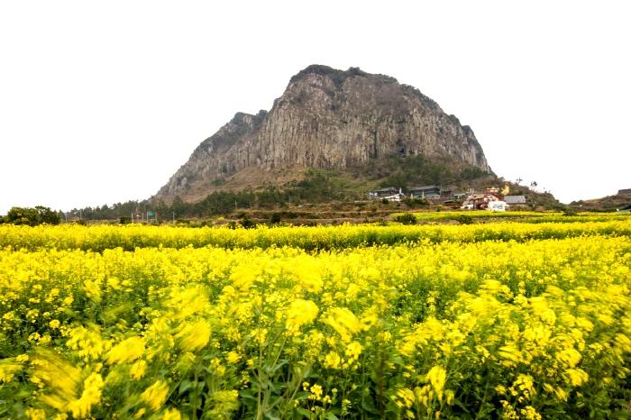 Mt. Sanbangsan - Jeju Island
