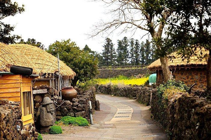 Korea Tour_Jeju Island